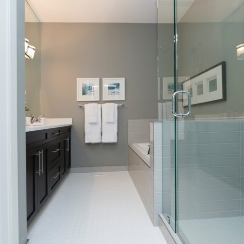 Frameless Shower Phoenix 15431 1